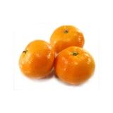 Mandarino Tacle